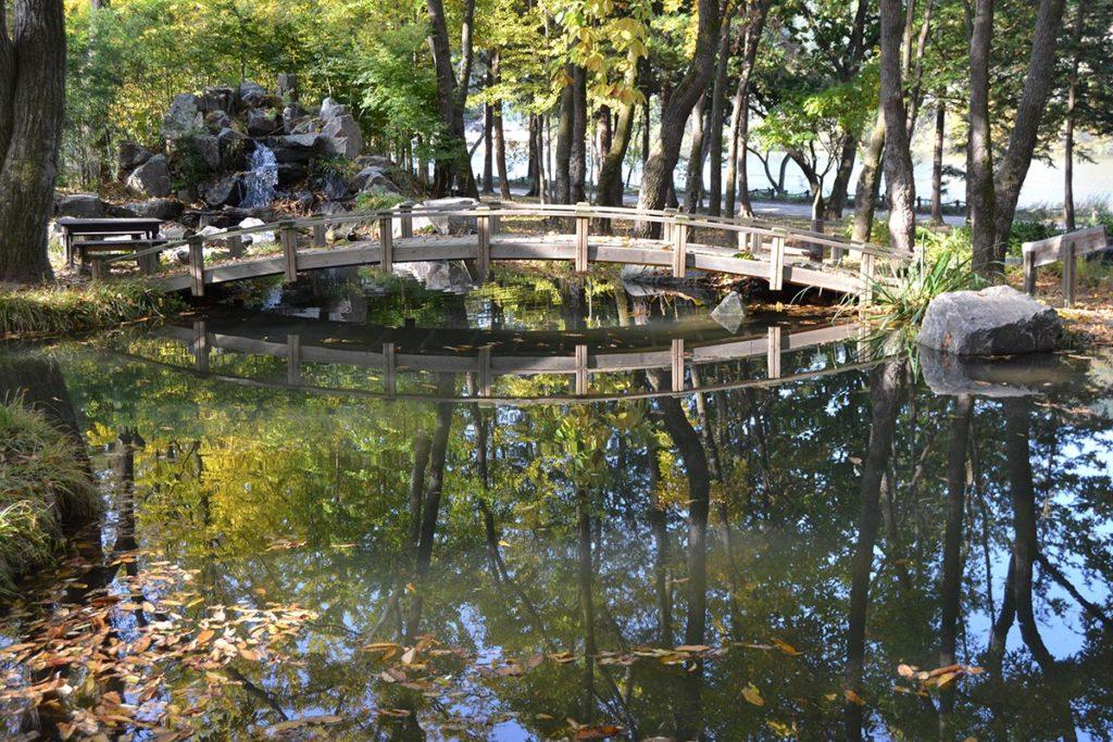 A small bridge on the Nami Island