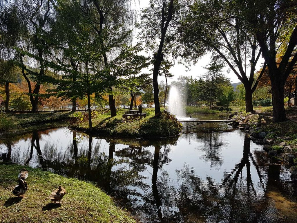 A little pond on the Nami Island