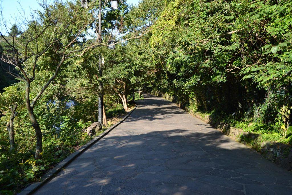 Пътека в парк Cheonjiyeon Falls
