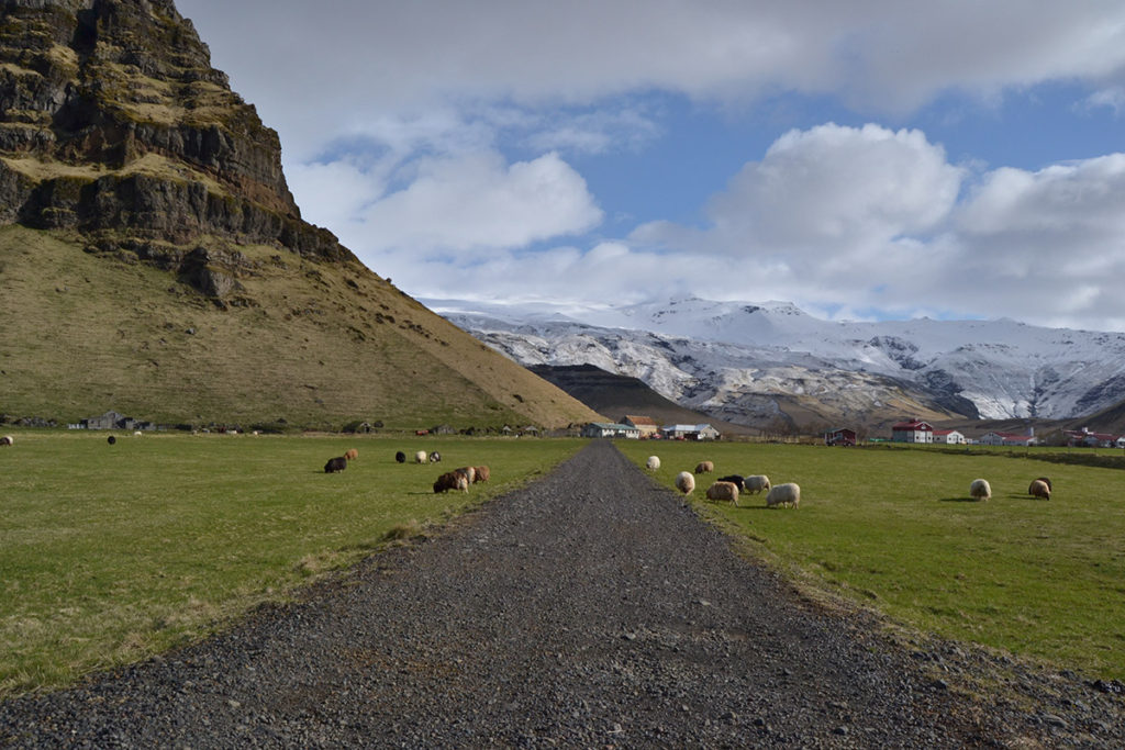 Nature in Iceland